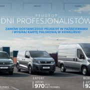 Dni profesjonalistów w Peugeot 12