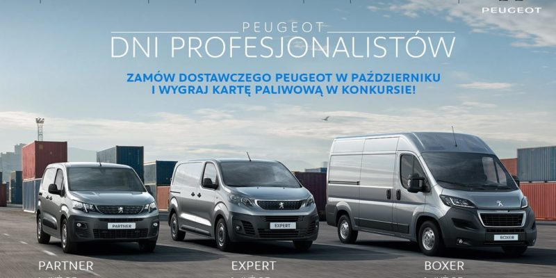 Dni profesjonalistów w Peugeot 1